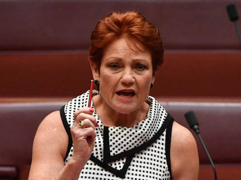 One Nation leader Pauline Hanson was condemned as racist for remarks on Closing the Gap outcomes.